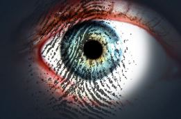 eye overlaid with a fingerprint